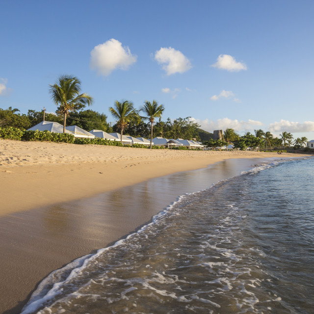 """""""Blue sky and palm trees frame the beach and the Caribbean sea, Hawksbill Bay,..."""" stock image"""