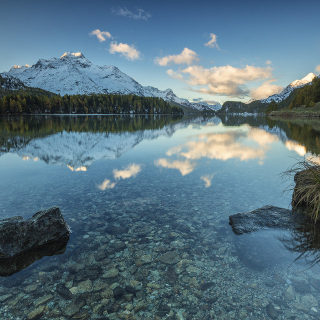 """Dawn illuminates the snowy peaks reflected in the calm waters of Lake Sils..."" stock image"