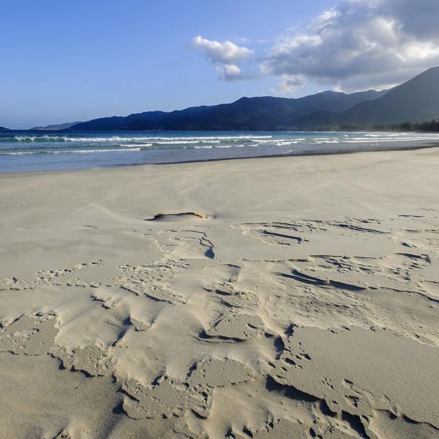 """Sand beach, Nui Cha National Park, Ninh Thuan province, Vietnam, Indochina,..."" stock image"