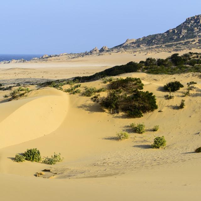 """""""Nam Cuong dunes, Phan Rang, Ninh Thuan province, Vietnam, Indochina,..."""" stock image"""