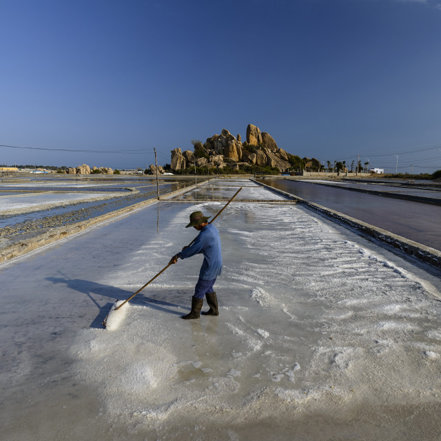 """Harvesting salt in the salt pans, Phan Rang, Ninh Thuan province, Vietnam,..."" stock image"