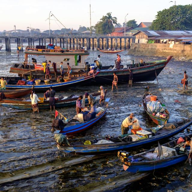 """Fishing port, Sittwe, Rakhaing state, Myanmar (Burma), Asia"" stock image"