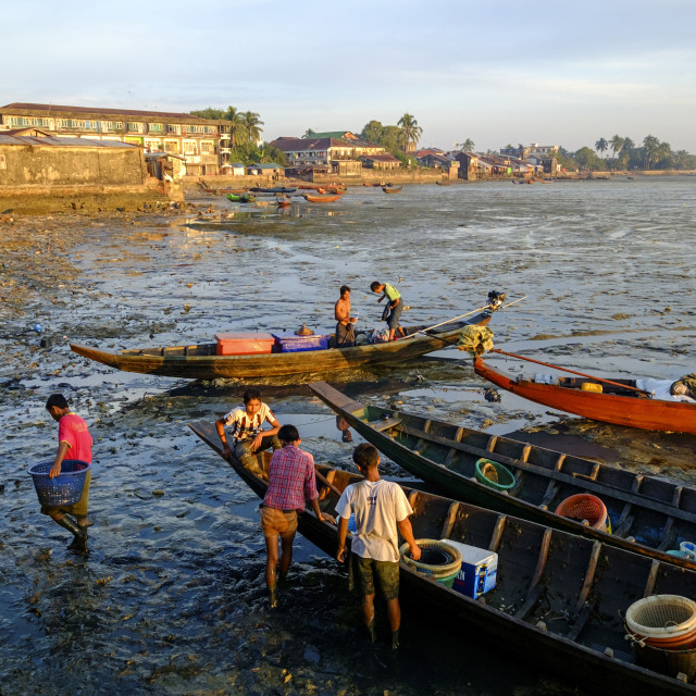 """""""Unloading fishing boats in front of the Fish market, Sittwe, Rakhaing state,..."""" stock image"""