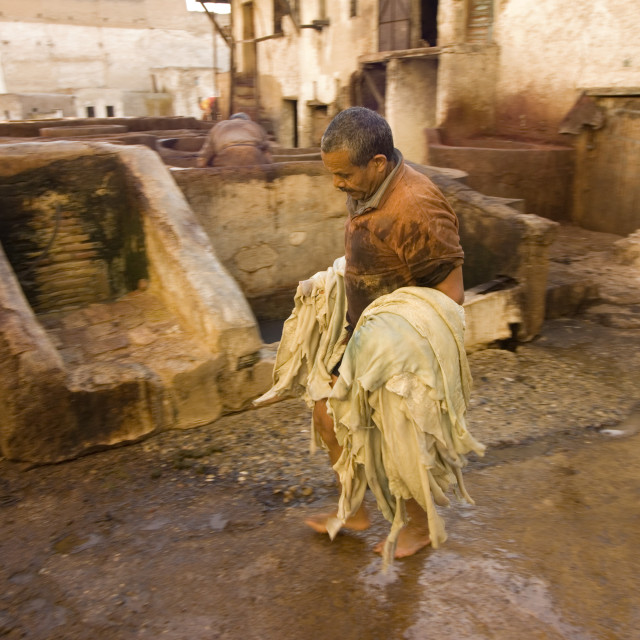 """""""The dyeing vats at the tannery in the old town of Fes, Morocco"""" stock image"""