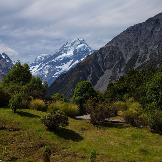 """Aoraki/Mount Cook National Park, Canterbury, South Island, New Zealand."" stock image"