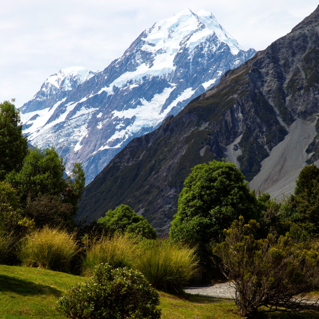 """Aoraki/Mount Cook National Park, Southern Alps, South Canterbury, South..."" stock image"