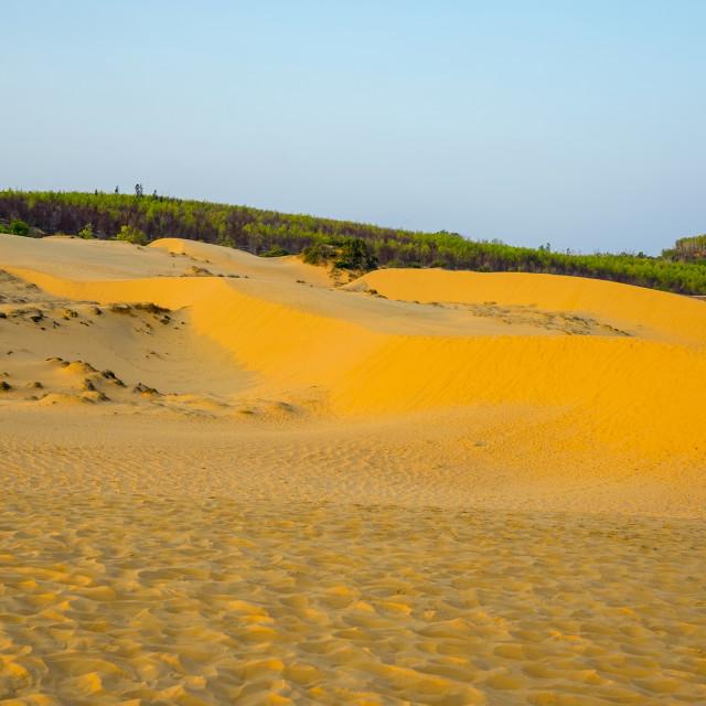 """Red sand dunes at Mui Ne, Phan Thiet, Binh Thuan Province, Vietnam"" stock image"