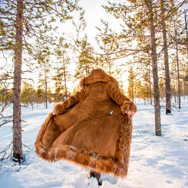 """""""Woman in Fur Coat in the Arctic Wilderness, Kakslauttanen Igloo West Village,..."""" stock image"""