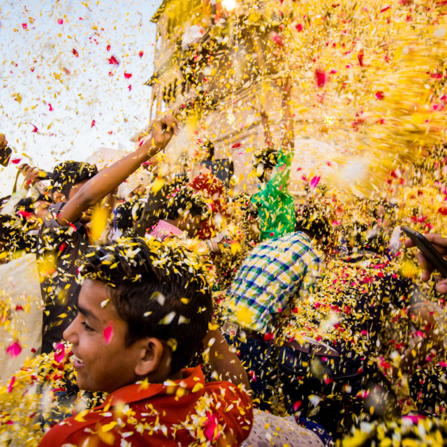 """Crowd throwing flower petals during the Flower Holi Festival, Vrindavan, India"" stock image"