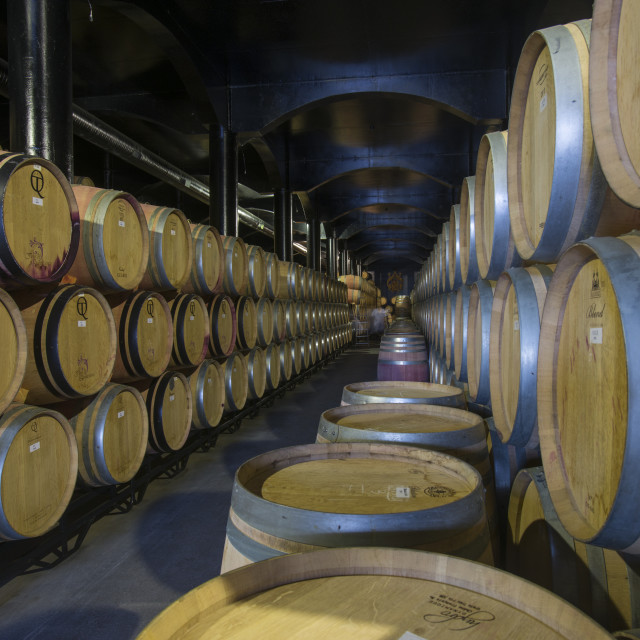 """""""Wine ageing in oak barrels in a cellar at a winery in the Alto Douro region..."""" stock image"""