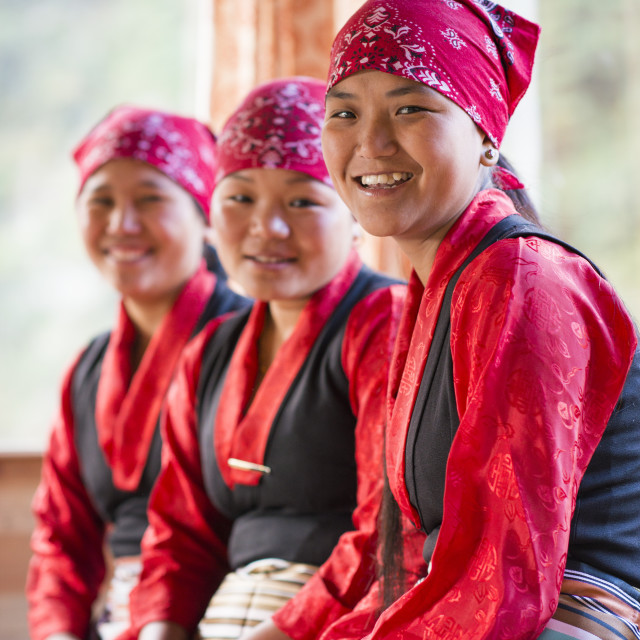 """Nepali women working in tea houses in the Everest region in Nepal"" stock image"