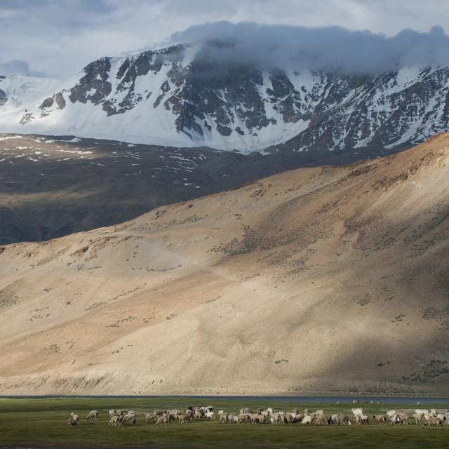 """""""Ladakh in India"""" stock image"""