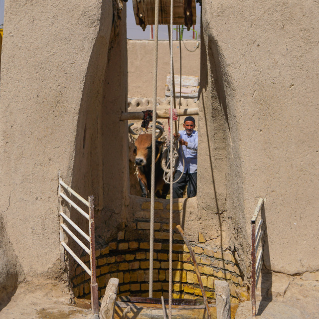 """Man and bull draw water from their well, Varzaneh, Iran"" stock image"