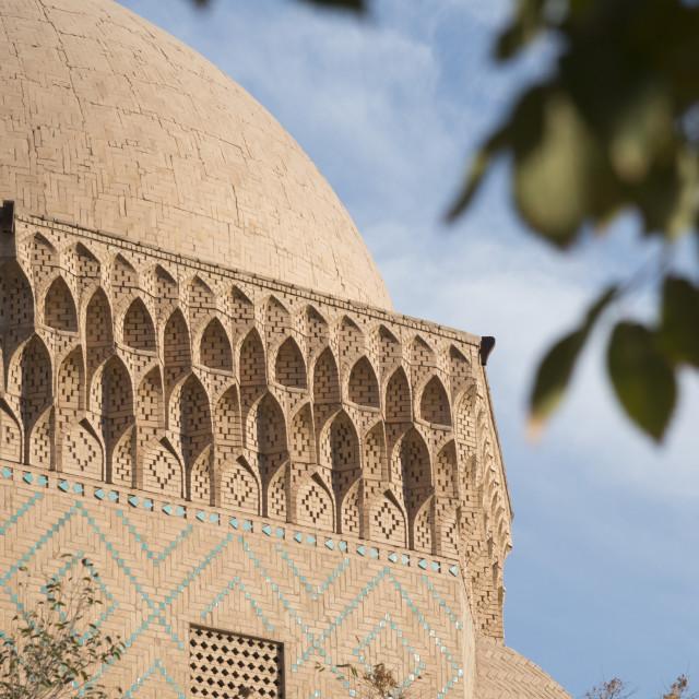 """Alexander prison. Old City. Yazd. Iran."" stock image"