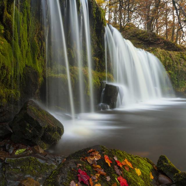"""Sqwd Ddwli Waterfall, near Pontneddfechan, Afon Pyrddin, Powys, Brecon..."" stock image"