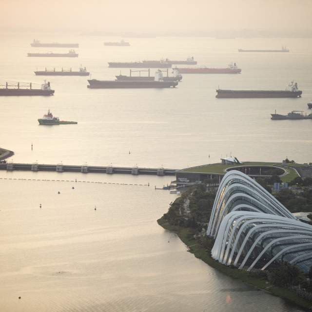 """Gardens by the Bay and Merchant Shipping Singapore"" stock image"