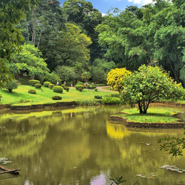"""Kandy Royal Botanical Gardens"" stock image"