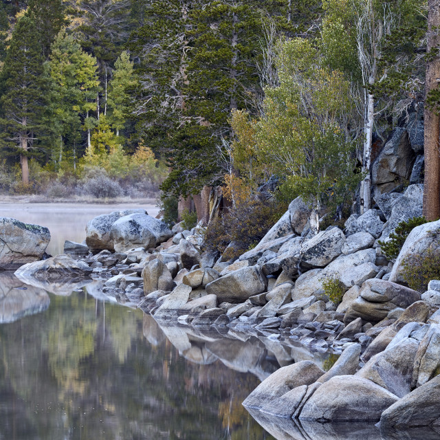 """""""Rock Creek Lake in the fall with fog, Inyo National Forest, California, USA"""" stock image"""