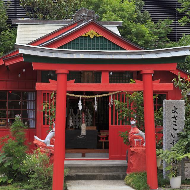 """Kochi dai Jingu Shrine, Kochi City, Shikoku Island, Japan, Asia"" stock image"