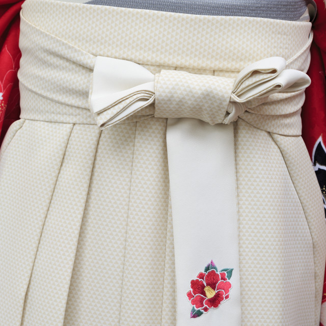 """Kimono, Arcade Street, Kochi City, Shikoku Island, Japan, Asia"" stock image"