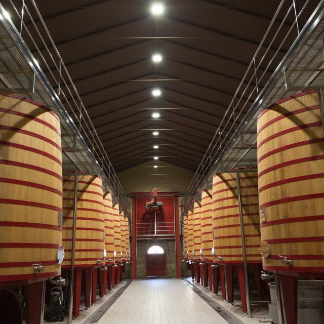 """""""Wine vats in a bodega in Rioja, Spain, Europe"""" stock image"""