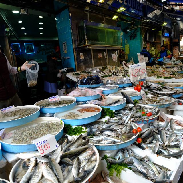 """Pignasecca fish market, Naples, Italy, Europe"" stock image"