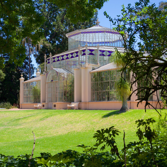 """Australia, South Australia, Adelaide, Botanical Gardens, The Palm House"" stock image"