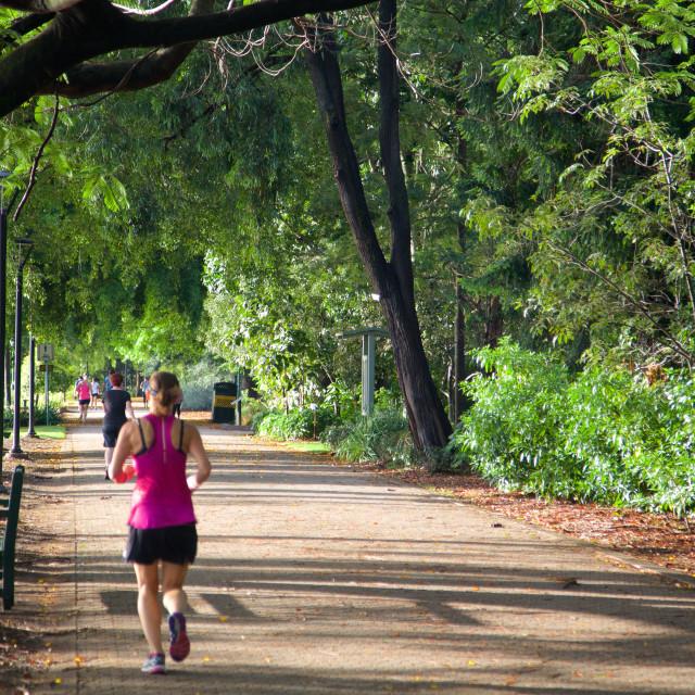 """Australia, Queensland, Brisbane, Botanical Gardens"" stock image"