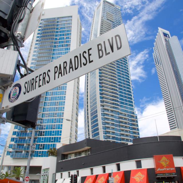 """Australia, Queensland, Gold Coast, Surfers Paradise Boulevard Sign"" stock image"