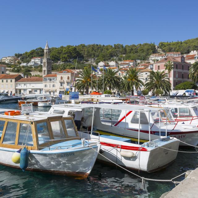 """Hvar Harbour, Hvar Island, Dalmatia, Croatia, Europe"" stock image"