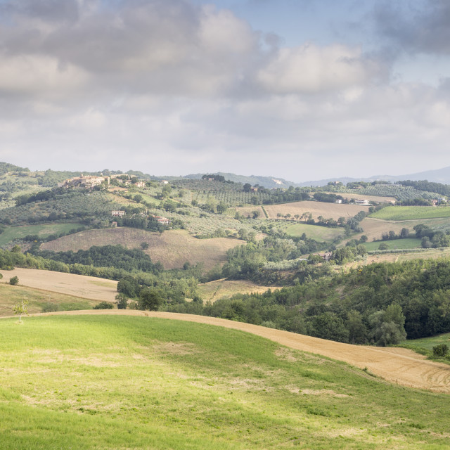 """Rolling hills of the Val di Spoleto, Umbria."" stock image"