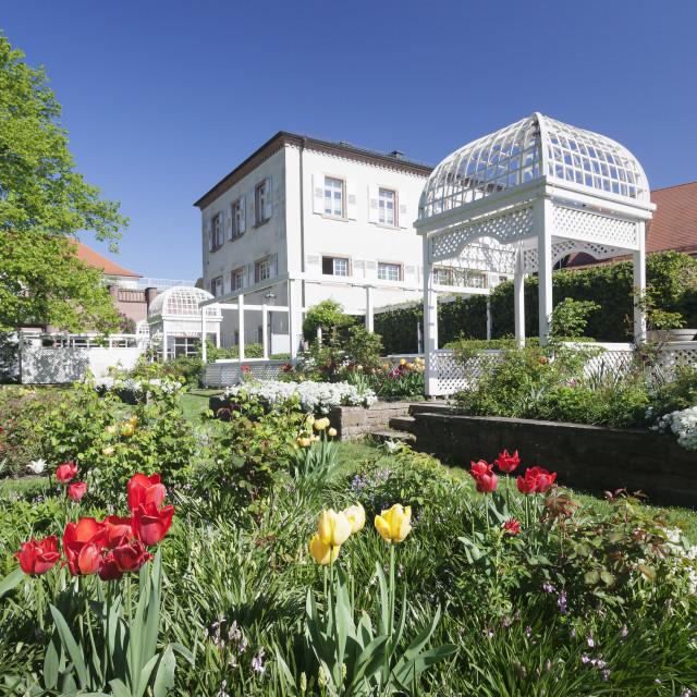 """""""Rosengarten (rose garden) in spring, Ettlingen, Baden-Wurttemberg, Germany,..."""" stock image"""