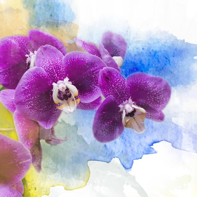 """purple world"" stock image"