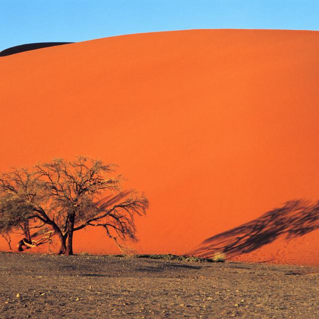 """""""Dune 45 near Sossusvlei in Namib Desert, Namibia.20-07-2003"""" stock image"""