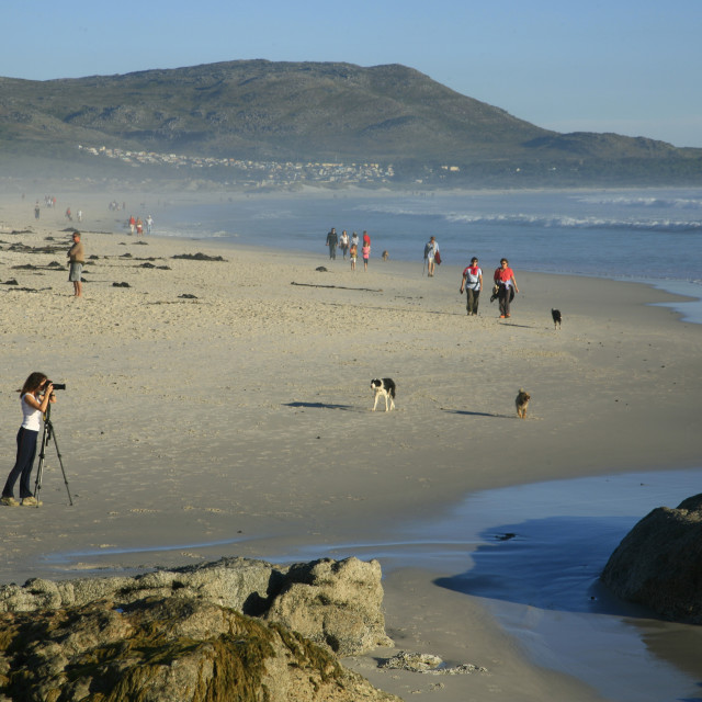 """""""A photographer and walkers on Noordhoek Beach, Cape Town, South Africa...."""" stock image"""