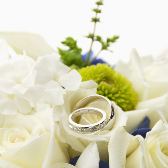 """A Bouquet Of White Roses With Two Wedding Bands Placed On Top; Portland,..."" stock image"