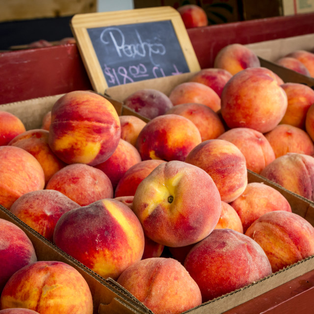"""Fresh picked peaches from orchard"" stock image"