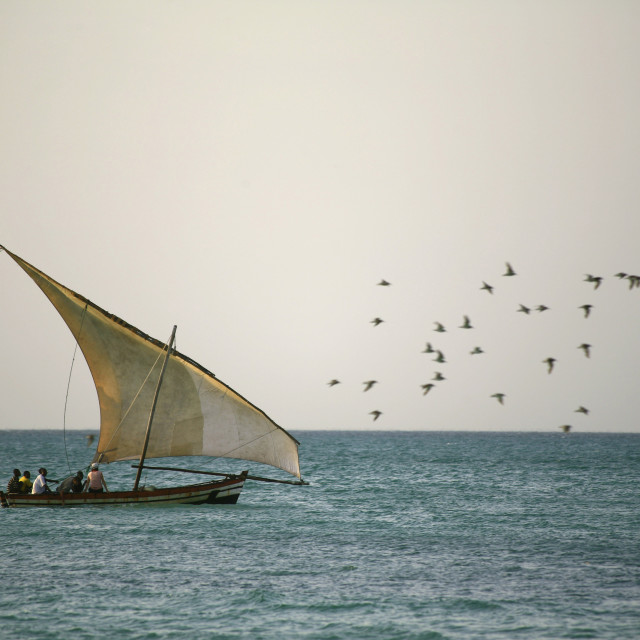 """dhow at sea, traditional sailing boat, Ibo Island, Quirimbas archipelago,..."" stock image"
