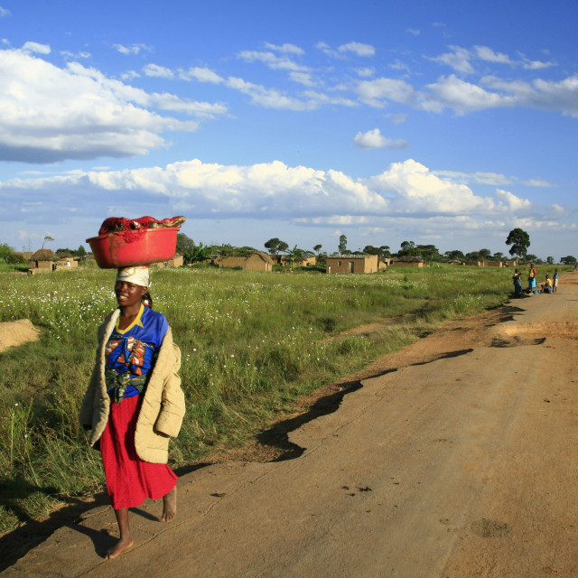 """""""a local Angolan woman walks down a dust path in the small village of Caconda...."""" stock image"""