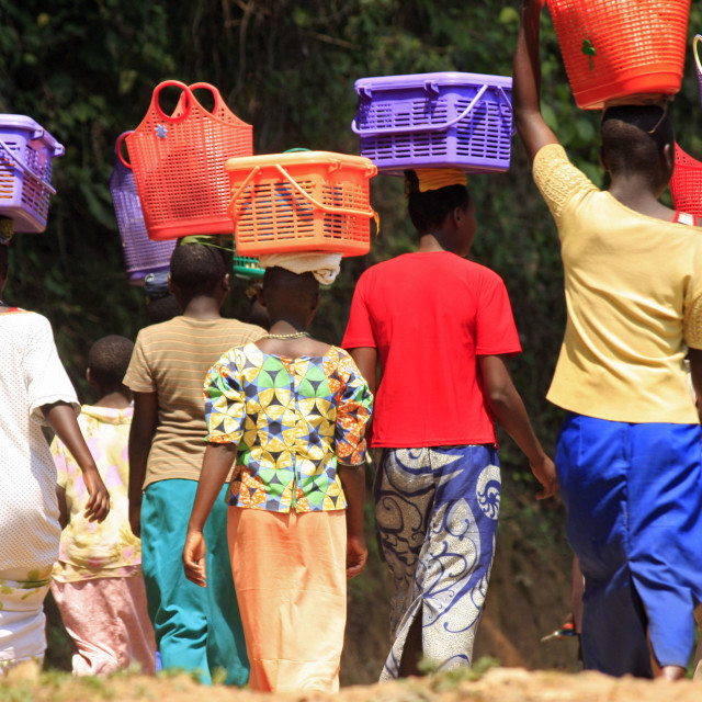 """""""Rwandan women walk with their baskets on their heads in Cyamudongo Forest in..."""" stock image"""