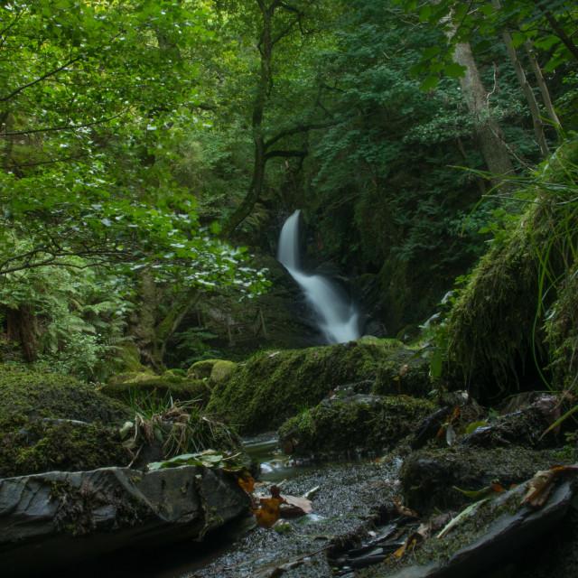 """""""Dolgoch Falls"""" stock image"""