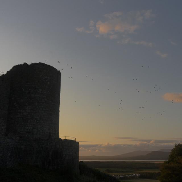 """Harlech Castle"" stock image"