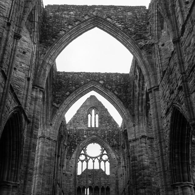 """Tintern Abbey, Wales"" stock image"
