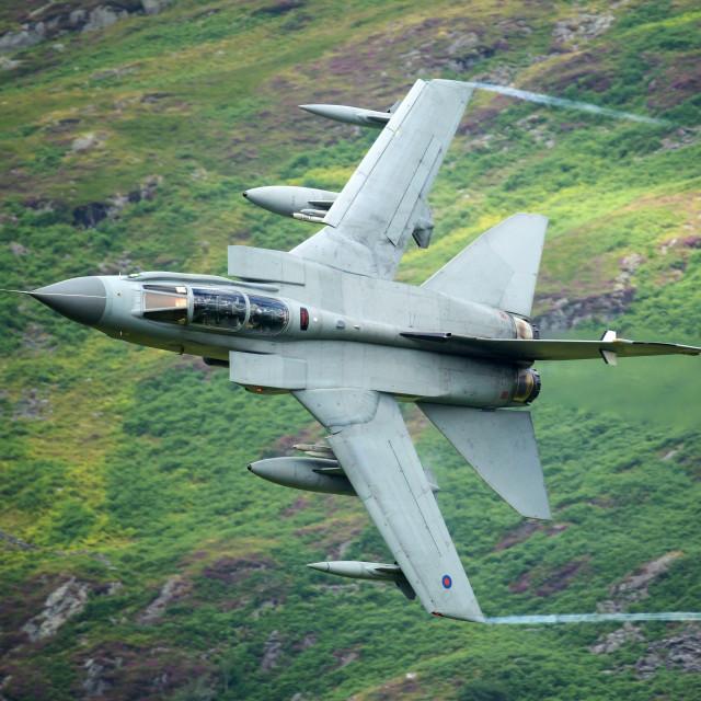 """Panavia Tornado - Call sign ""Wolf"""" stock image"