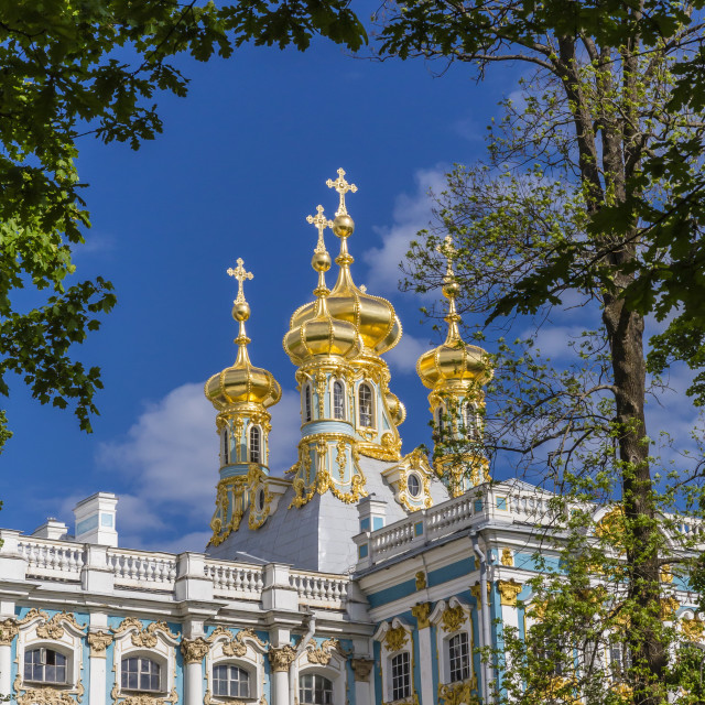 """Exterior view of the Catherine Palace, Tsarskoe Selo, St. Petersburg, Russia,..."" stock image"