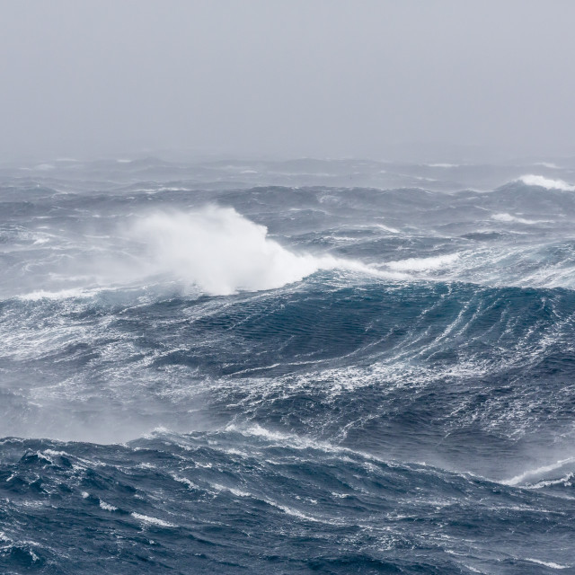 """""""Gale force westerly winds build large waves in the Drake Passage, Antarctica,..."""" stock image"""