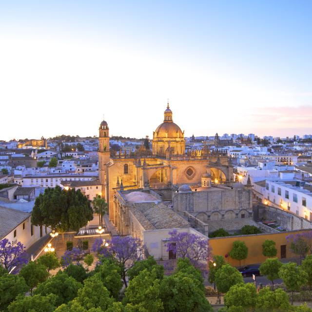 """The Cathedral of San Salvador at dusk, Jerez de la Frontera, Cadiz Province,..."" stock image"