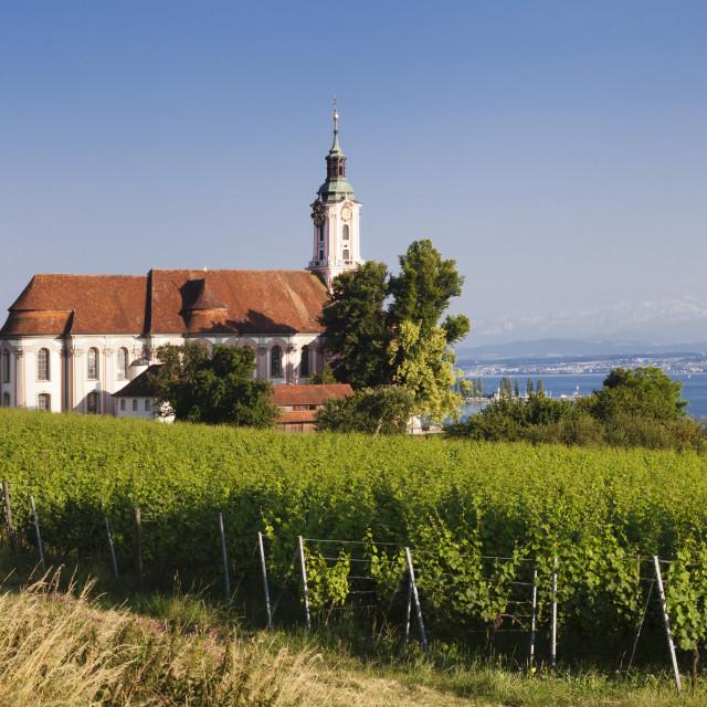 """""""Pilgrimage church of Birnau Abbey and vineyards, Unteruhldingen, Lake..."""" stock image"""