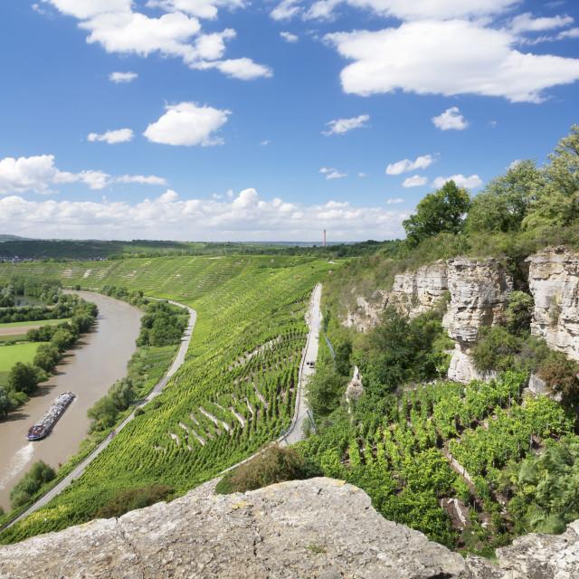 """Hessigheim Felsengarten (Rock Gardens), Neckartal Valley, River Neckar, Baden..."" stock image"
