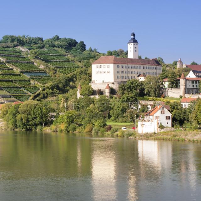"""Schloss Horneck Castle, Gundelsheim, Neckartal Valley, Neckar River, Baden..."" stock image"